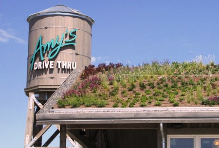 Amy's Drive Thru Opens Strong in California